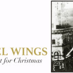 Angel Wings ... Not Just For Christmas