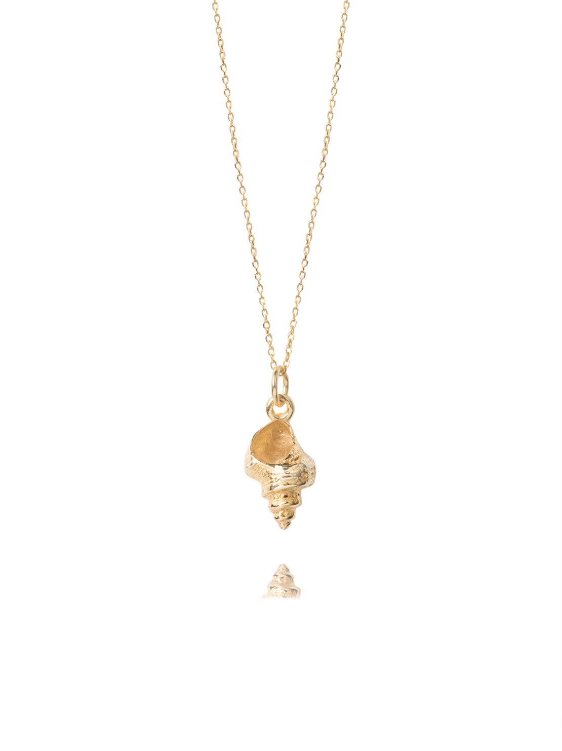 Gold Whelk Shell On Trace Chain