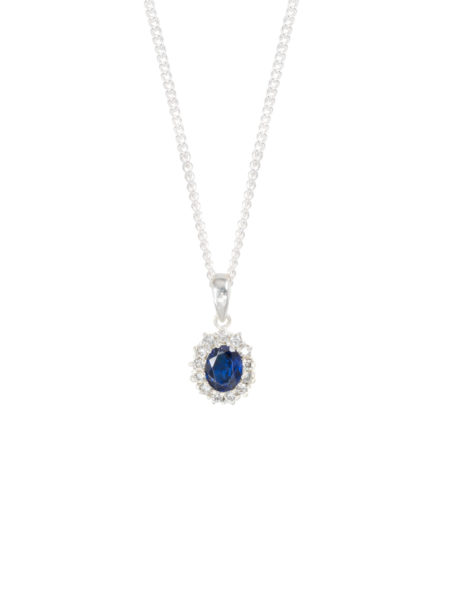 Sapphire and Diamond Charm on Fine Curb Chain